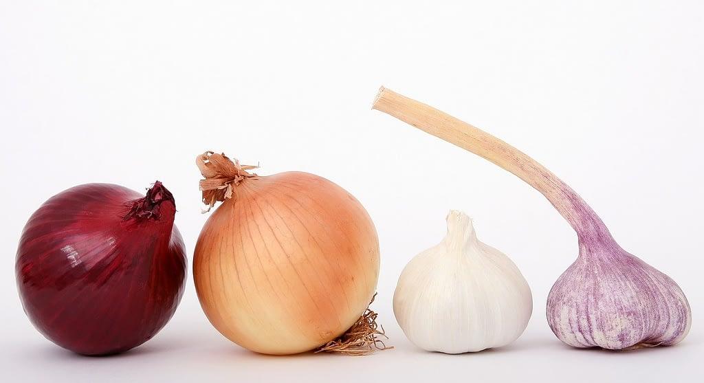 food, onions, garlic